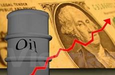 Giá dầu thô tiếp tục tăng trên thị trường Mỹ