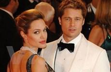 Brad Pitt và Angelina Jolie thành nhà thiết kế