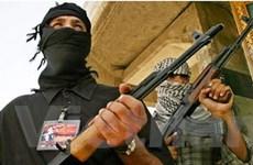 Cảnh báo nguy cơ Al Qaeda tấn công ở vùng Vịnh