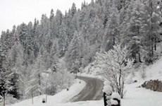 Giá rét và bão tuyết vẫn hoành hành ở châu Âu