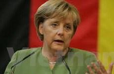 Người Đức muốn thấy lại Chính phủ đại liên minh