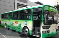 """TP Hồ Chí Minh: """"Xe buýt xanh"""" chưa thể hoạt động"""