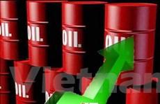 Giá dầu châu Á đi lên do lo ngại mưa bão tại Mỹ