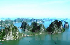 Lướt web trên biển Vịnh Hạ Long