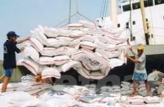 1.000 tỷ đồng lãi suất thấp để thu mua tạm trữ gạo