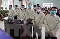 Phạt 25 năm tù đối với nhóm thanh niên tổ chức nhập cảnh trái phép