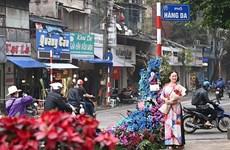 Hơn 100 cột đèn 'nở hoa' giữa trung tâm Hà Nội nhân ngày 8/3