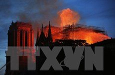 Vụ cháy Nhà thờ Đức Bà Paris: Khoảnh khắc ngọn tháp đổ sập