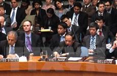 Một số hình ảnh đoàn Việt Nam tham gia các cuộc họp của Liên hợp quốc