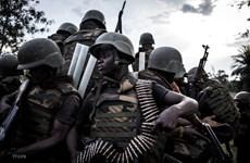 Bạo lực ở Cộng hòa Dân chủ Congo, hàng chục người thiệt mạng