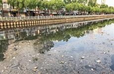 Kênh Nhiêu Lộc-Thị Nghè tái ô nhiễm vì rác thải sau mưa lớn kéo dài