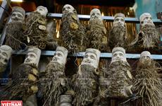 Chiêm ngưỡng những bức tượng chân dung cổ quái và kỳ lạ từ gốc tre