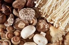 Những loại thực phẩm giúp tăng sức đề kháng cơ thể thời dịch COVID-19