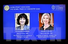 Giải Nobel Hóa học 2020 vinh danh 2 nhà khoa học người Pháp và Mỹ