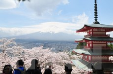 Nhật Bản tạm ngưng chương trình kích cầu du lịch tại Sapporo và Osaka