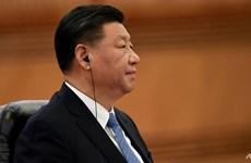 Chủ tịch Trung Quốc gửi điện chia buồn về vụ rơi máy bay ở Nga
