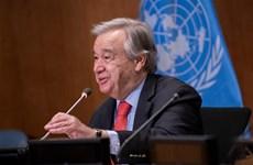 Liên hợp quốc khởi động Thập kỷ phục hồi hệ sinh thái