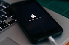 FBI truy cập thành công dữ liệu iPhone của hung thủ vụ xả súng ở Mỹ