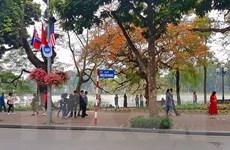 Hà Nội trang hoàng đường phố chào mừng Hội nghị Mỹ-Triều