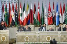 Những vấn đề được đưa ra bàn luận tại Hội nghị thượng đỉnh Arab