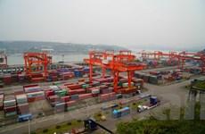 Tiềm năng hợp tác giữa Trùng Khánh và Việt Nam còn rất lớn