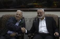 Hamas và Ủy ban bầu cử Palestine nhất trí tổ chức tổng tuyển cử