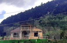Lâm Đồng: Cương quyết giải tỏa 'làng biệt thự' trên đất rừng có chủ