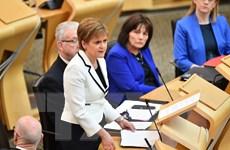 Thủ hiến Scotland thông báo kế hoạch trưng cầu ý dân về độc lập