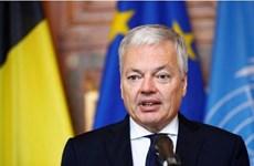 Chính phủ Bỉ cân nhắc ngừng cung cấp vũ khí cho Saudi Arabia