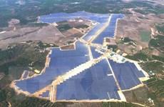 """Đắk Nông: Lợi ích """"kép"""" từ dự án điện Mặt Trời quy mô lớn"""