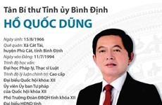 [Infographics] Tân Bí thư Tỉnh ủy Bình Định Hồ Quốc Dũng