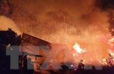 Bình Dương: Cháy lớn tại một cơ sở sản xuất gỗ trong đêm