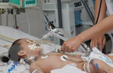 TP.HCM: Gia tăng số ca mắc tay chân miệng, nhiều ca bệnh nặng