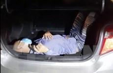 Tuyên Quang: Phát hiện người trốn trong cốp xe tại chốt kiểm dịch