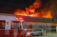 Brazil: Hỏa hoạn thiêu rụi kho lưu trữ phim lớn nhất Nam Mỹ