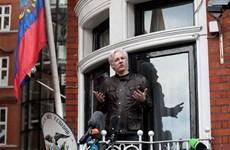 Phản ứng liên quan vụ bắt giữ nhà sáng lập WikiLeaks Julian Assange