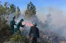 Nắng nóng, nhiều vụ cháy rừng xảy ở Điện Biên, Lai Châu và Sơn La