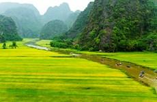"""Bí kíp đi du lịch ở Ninh Bình giữa """"mùa vàng"""" Tam Cốc"""