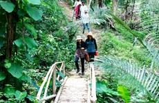 Bình Thuận phát triển sản phẩm du lịch gắn với nông nghiệp bền vững