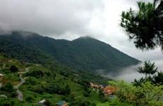 Ghé thăm Vườn quốc gia Tam Đảo - khu đa dạng sinh học cao