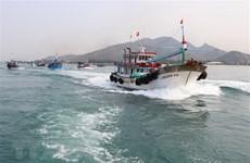 """Khắc phục """"thẻ vàng"""": Cấp bách chống khai thác hải sản bất hợp pháp"""
