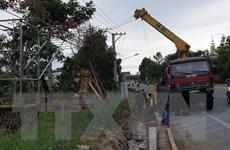 Lâm Đồng: Xe cẩu cây xanh vướng dây điện, 2 người trong cabin bị bỏng