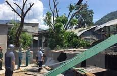 Ninh Thuận: Lốc xoáy gây thiệt hại lớn về tài sản của dân ở Phước Bình