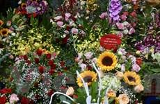 Hà Nội: Rực rỡ sắc hoa tươi chào mừng Ngày Nhà giáo Việt Nam
