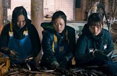 Lên lịch chiếu phim về người lao động Việt Nam tại Nhật Bản