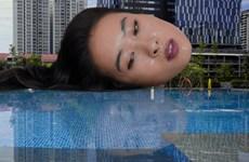 Ba tác phẩm nghệ thuật Việt Nam dự triển lãm châu Á-Thái Bình Dương