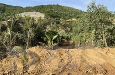 Đà Nẵng: Điều tra vụ khai thác đất dọc cao tốc La Sơn-Túy Loan