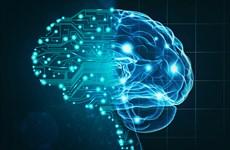Tây Ban Nha đầu tư 600 triệu euro cho trí tuệ nhân tạo