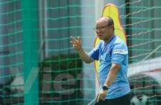 VFF bổ sung nguồn lực cho HLV Park Hang-seo nhắm tới SEA Games 31