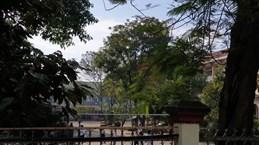 Lâm Đồng: Điều tra vụ nhân viên văn thư chết trong trường học
